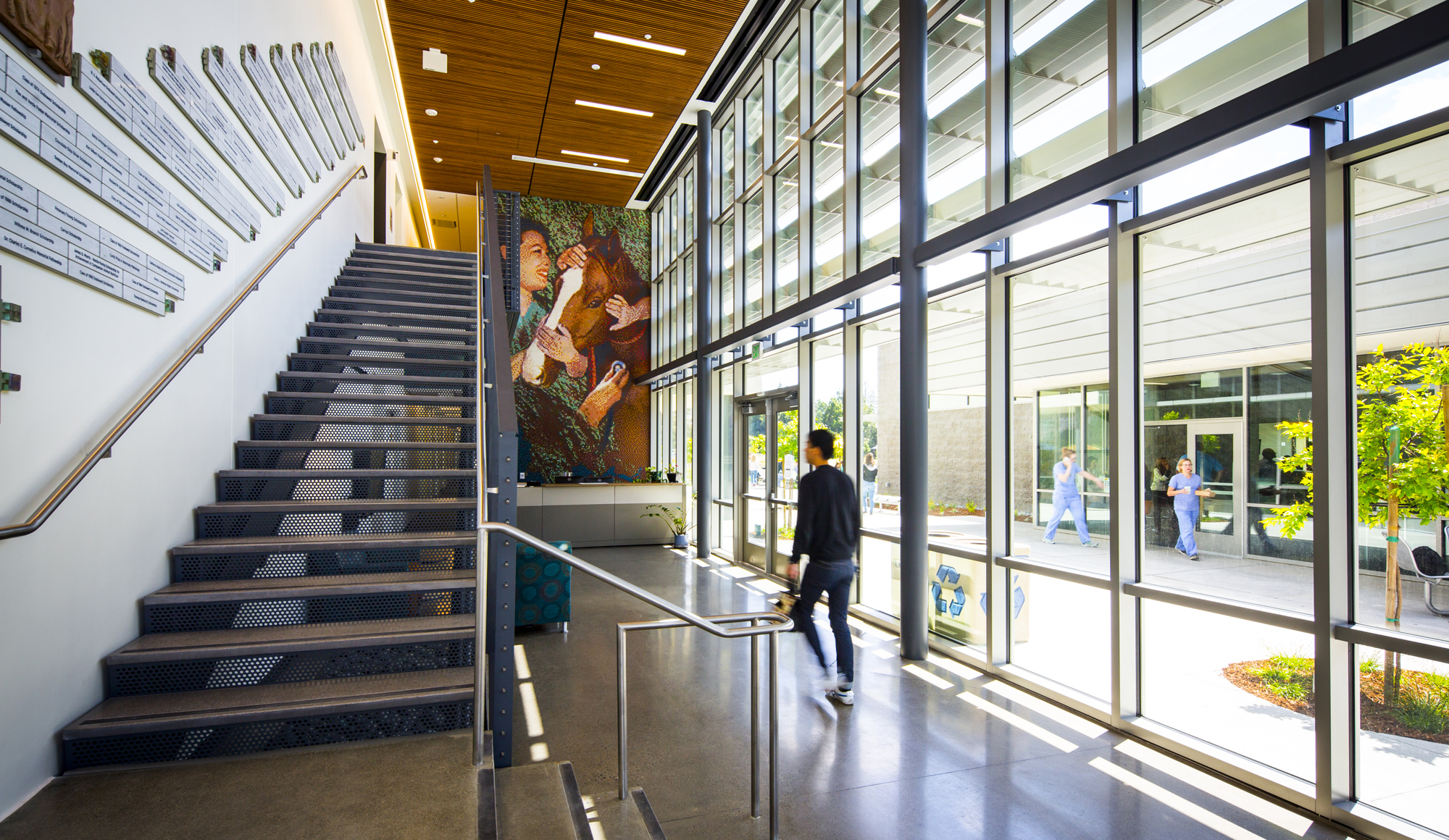 uc davis veterinary medicine student services and administration center